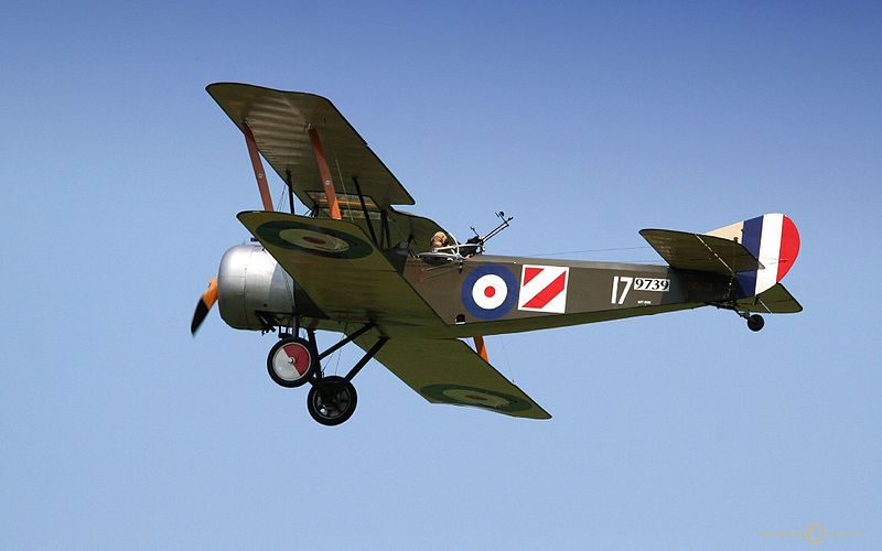 Sopwith Strutter - Réplique aux couleurs du Royal Flying Corps en vol