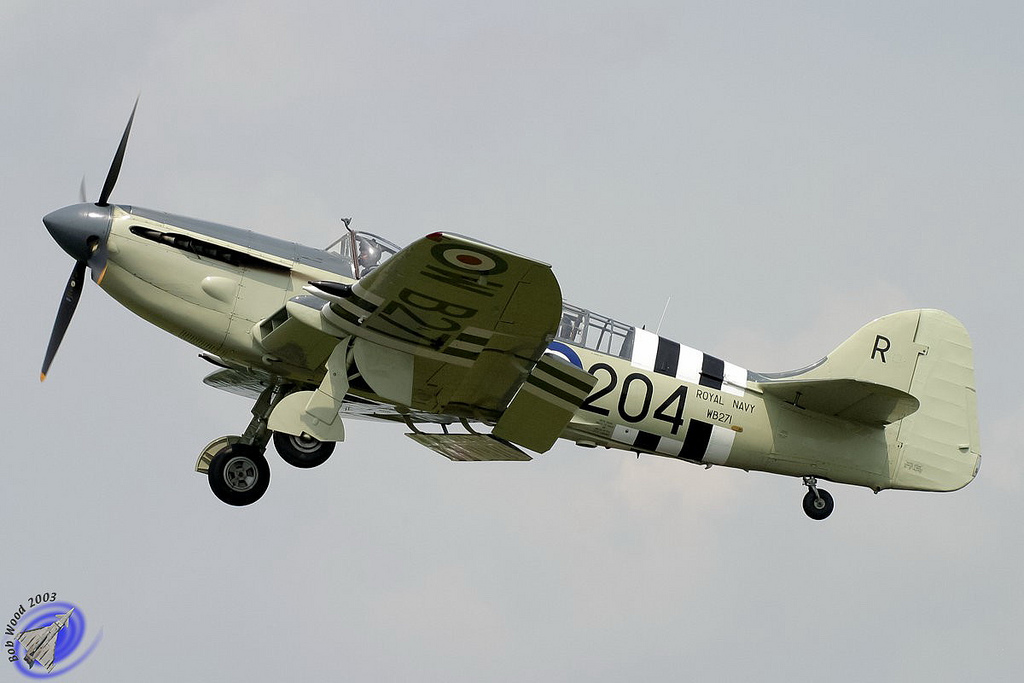 Fairey Firefly AS.5 aux couleurs de la Royal Navy