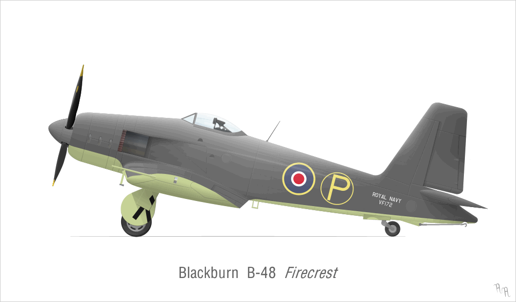 Blackburn Firecrest, profil couleur