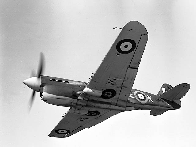 Curtiss P-40 Warhawk canadien