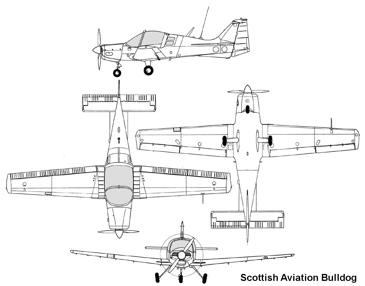 Scottish Bulldog 120